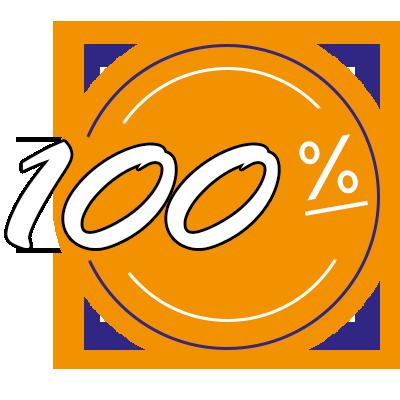 100%-Icon